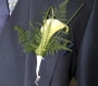 Wedding flowers plymouth  groom and best man button holes hunny b florist